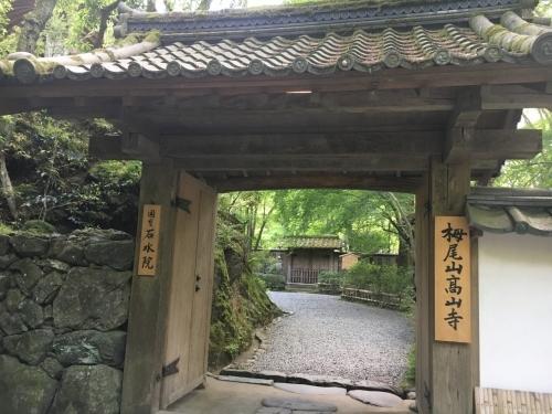 京都の旅\'19Ⅳ 京都青楓その2_e0326953_00085890.jpg
