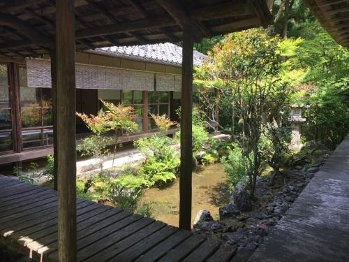 京都の旅\'19Ⅳ 京都青楓その2_e0326953_00135540.jpg