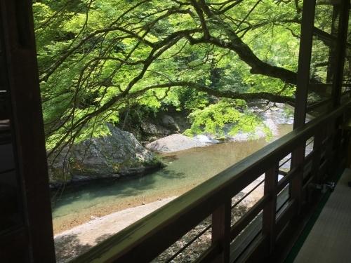 京都の旅\'19Ⅳ 京都青楓その2_e0326953_00434150.jpg
