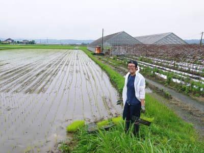 健康農園さんの無農薬栽培『雑穀米』『発芽玄米』大好評発売中!無農薬栽培のこだわりの様子!_a0254656_18031253.jpg