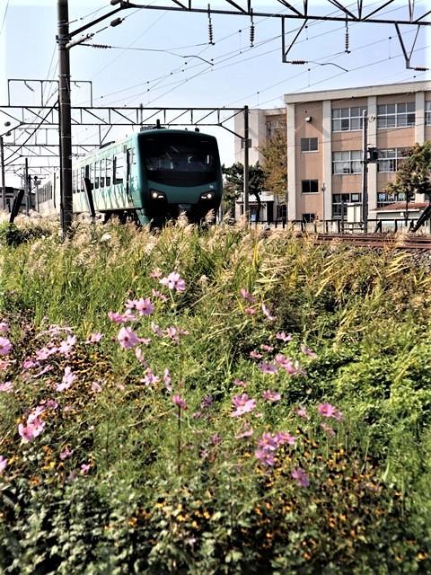 藤田八束の鉄道写真@トライアングル鉄道のある街を探しています。・・・大阪の加島トライアングルと青森千刈小学校前のトライアングルは素晴らしい。_d0181492_21070430.jpg