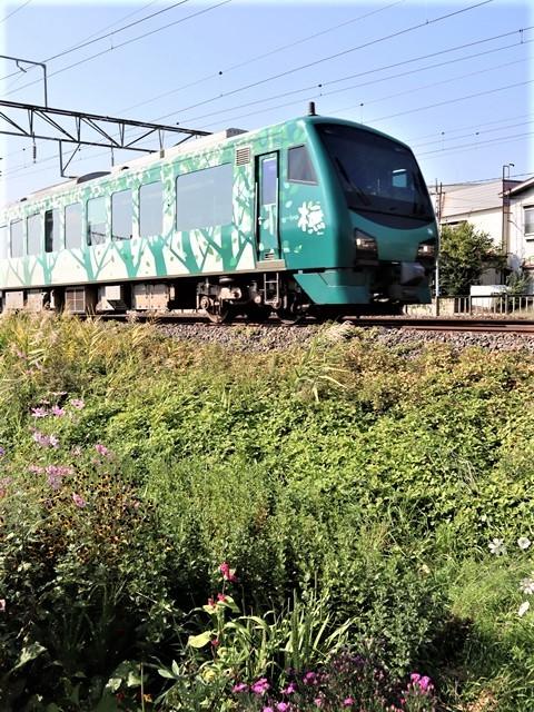 藤田八束の鉄道写真@トライアングル鉄道のある街を探しています。・・・大阪の加島トライアングルと青森千刈小学校前のトライアングルは素晴らしい。_d0181492_21071294.jpg
