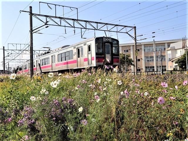藤田八束の鉄道写真@トライアングル鉄道のある街を探しています。・・・大阪の加島トライアングルと青森千刈小学校前のトライアングルは素晴らしい。_d0181492_21095087.jpg