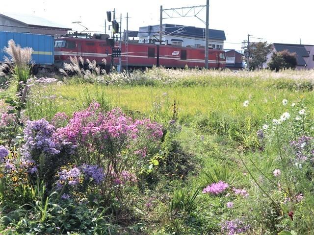 藤田八束の鉄道写真@トライアングル鉄道のある街を探しています。・・・大阪の加島トライアングルと青森千刈小学校前のトライアングルは素晴らしい。_d0181492_21112388.jpg