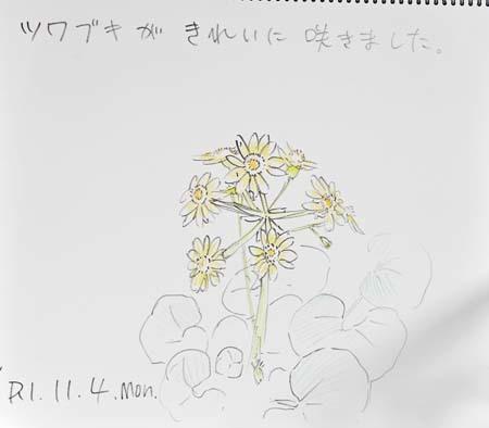 最近の中庭_b0364195_09372321.jpg