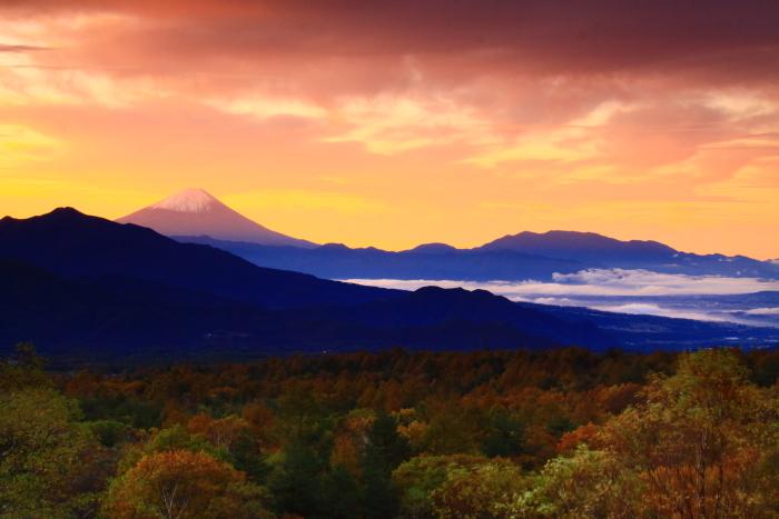 令和元年10月の富士(29)八ヶ岳南麓美し森からの富士_e0344396_13022605.jpg