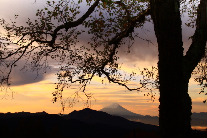 令和元年10月の富士(29)八ヶ岳南麓美し森からの富士_e0344396_13024612.jpg