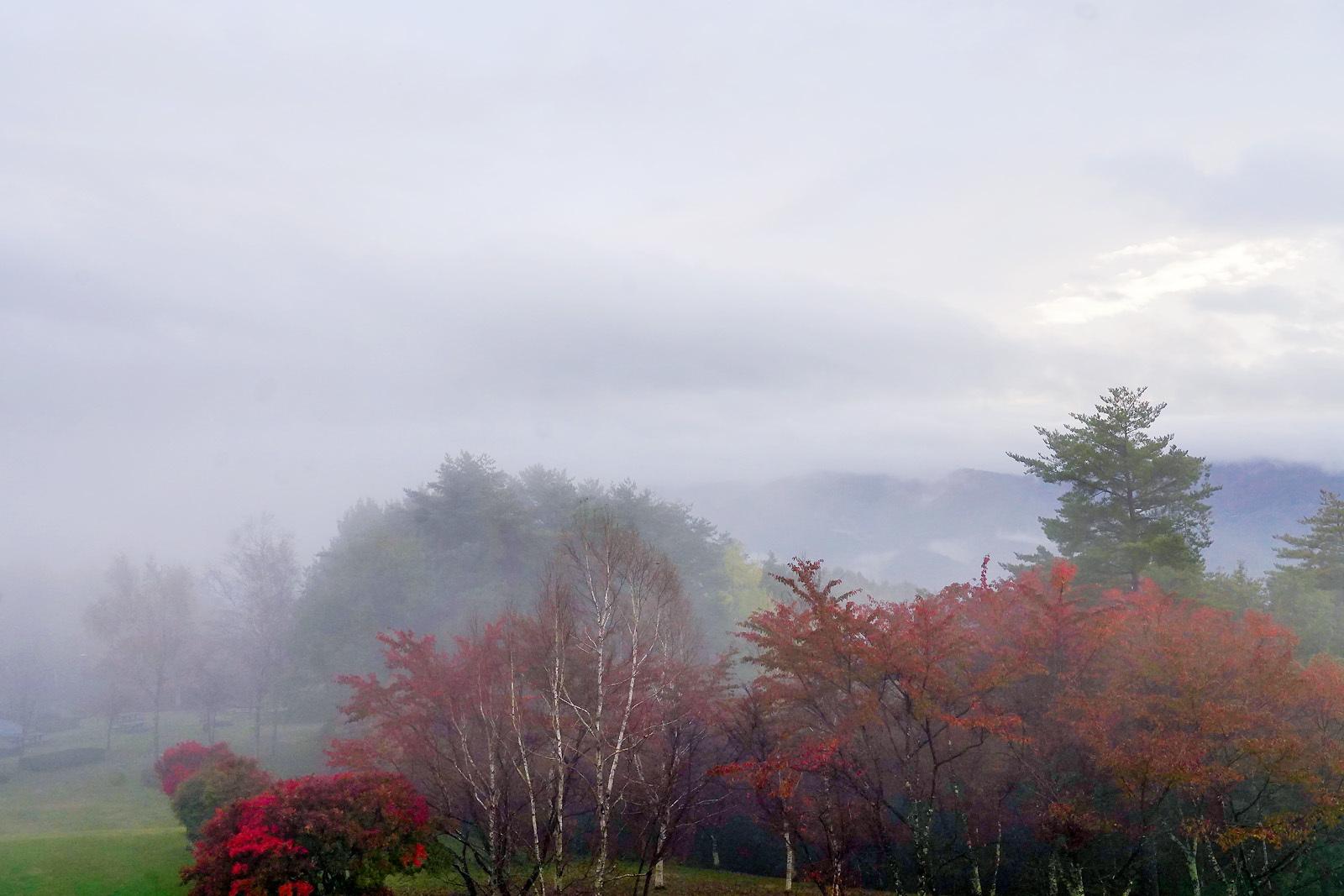 霧に煙る_e0367501_16285360.jpg