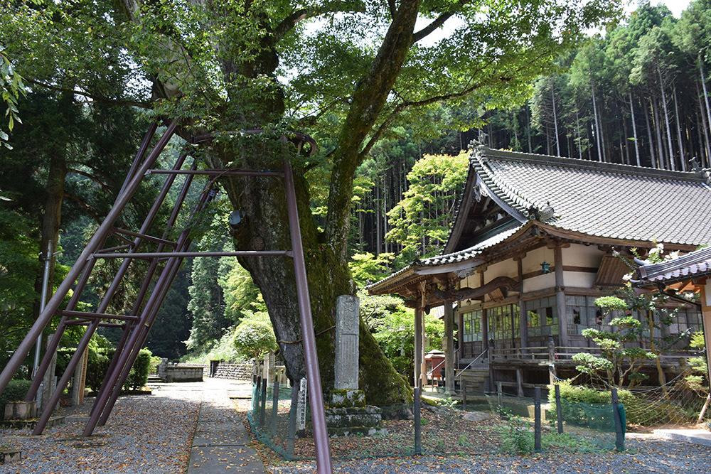 「生野の変」ゆかりの地を訪ねて。 その2 <延應寺>_e0158128_16585406.jpg