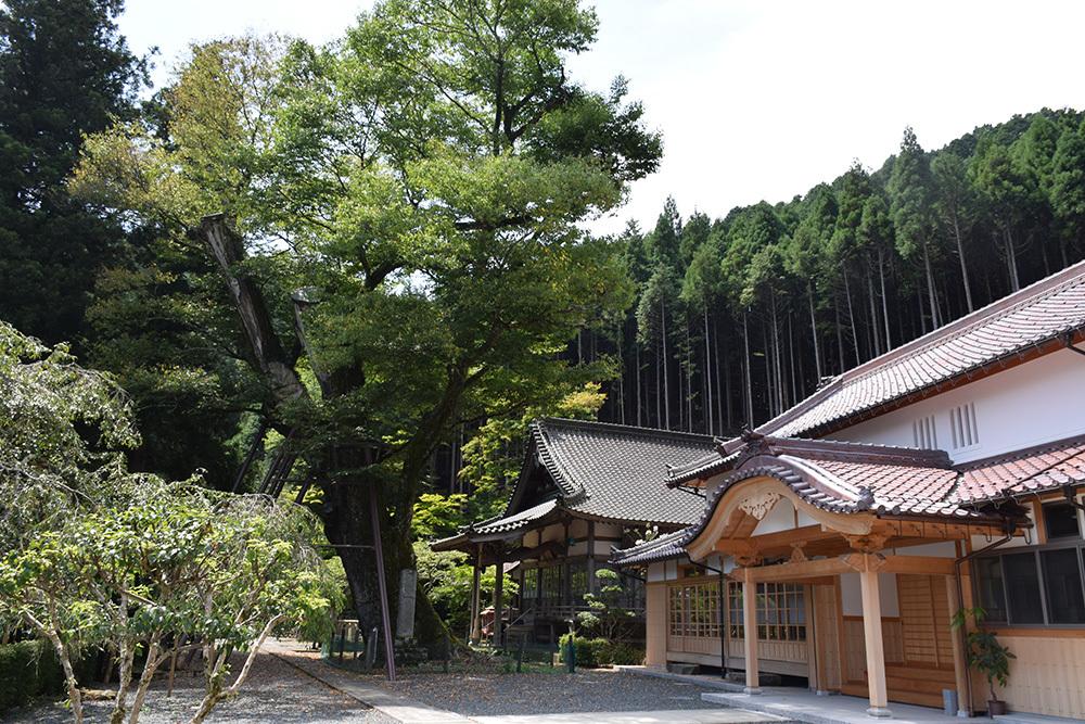 「生野の変」ゆかりの地を訪ねて。 その2 <延應寺>_e0158128_17080259.jpg