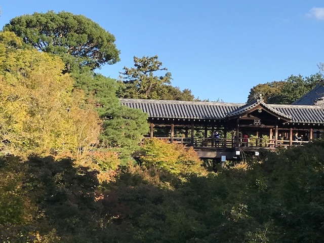 今日の東福寺_d0020139_15352105.jpeg