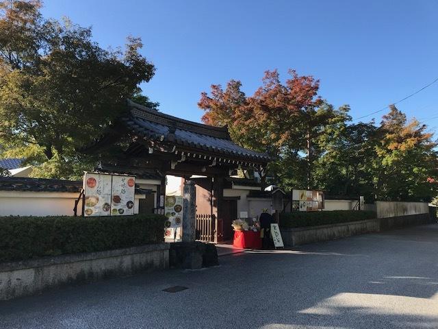 今日の東福寺_d0020139_15352932.jpeg