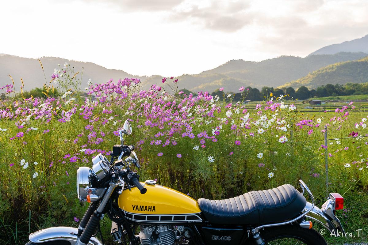 バイクは楽し!! YAMAHA SR400 -57-_f0152550_21242542.jpg