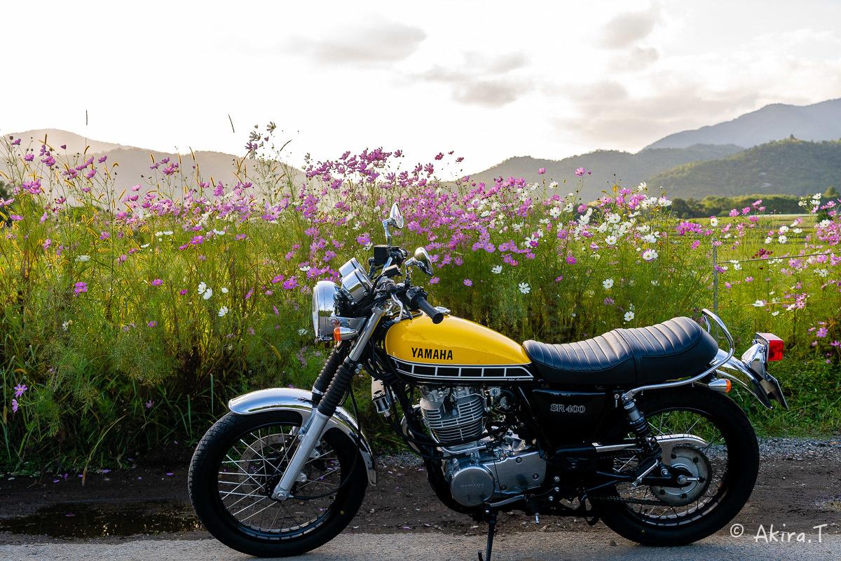 バイクは楽し!! YAMAHA SR400 -57-_f0152550_21243523.jpg