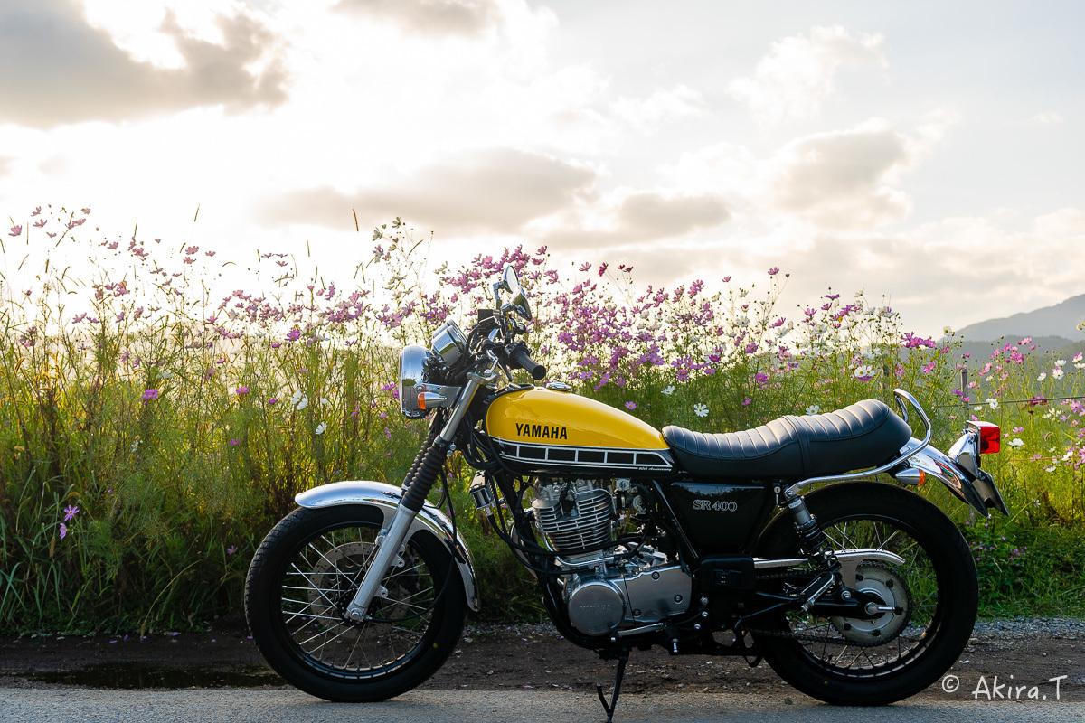 バイクは楽し!! YAMAHA SR400 -57-_f0152550_21244425.jpg