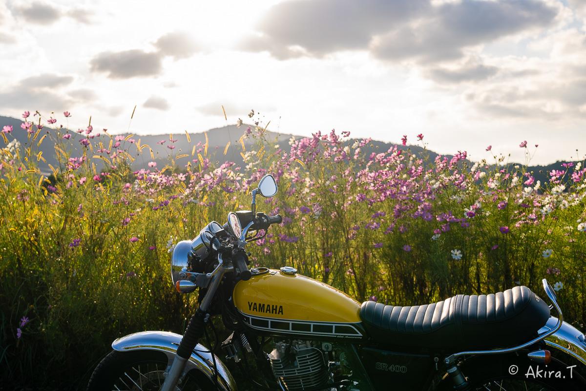 バイクは楽し!! YAMAHA SR400 -57-_f0152550_21245468.jpg