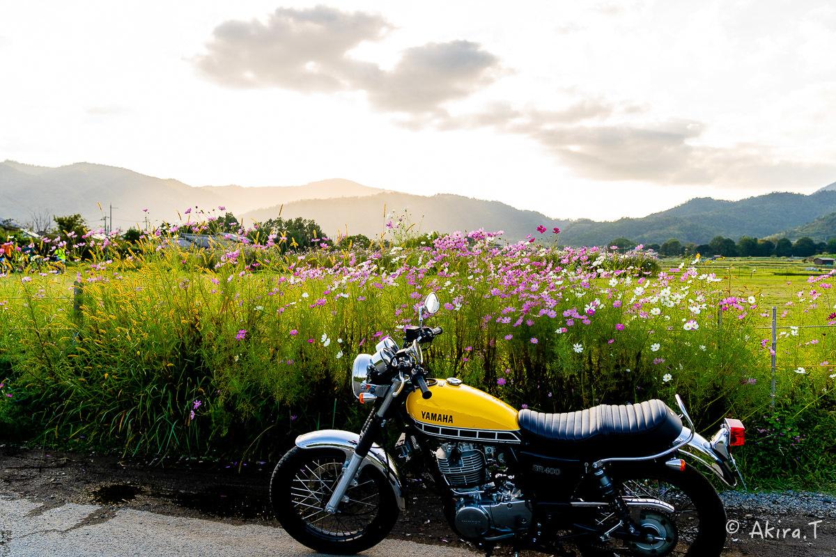 バイクは楽し!! YAMAHA SR400 -57-_f0152550_21261265.jpg