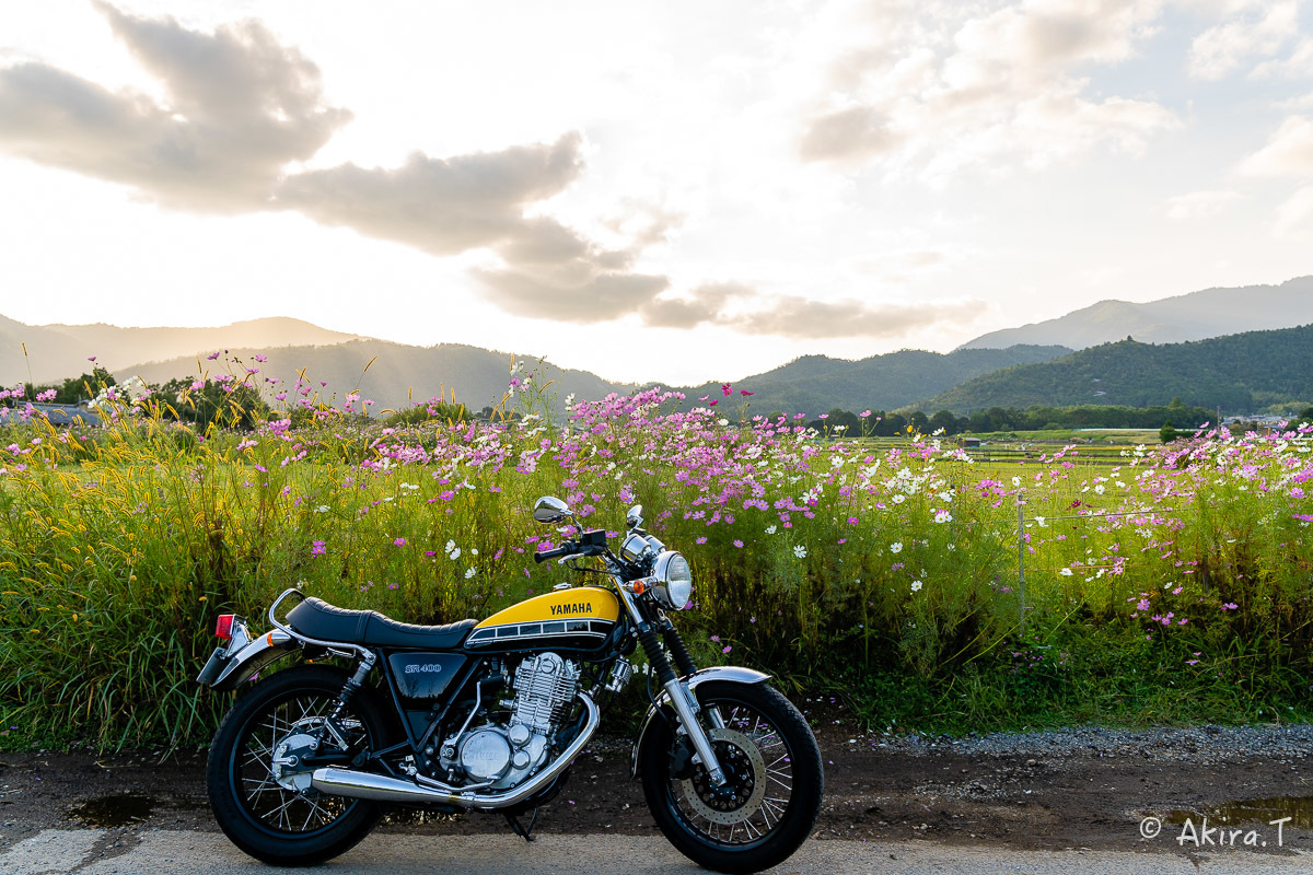 バイクは楽し!! YAMAHA SR400 -57-_f0152550_21263414.jpg