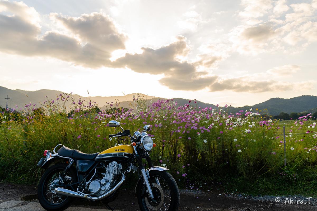 バイクは楽し!! YAMAHA SR400 -57-_f0152550_21272793.jpg