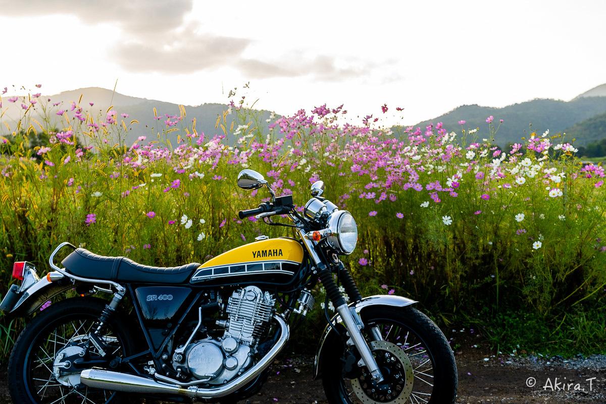 バイクは楽し!! YAMAHA SR400 -57-_f0152550_21274643.jpg