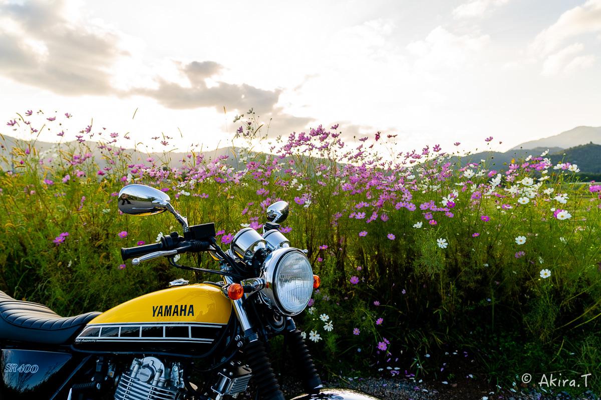 バイクは楽し!! YAMAHA SR400 -57-_f0152550_21280360.jpg