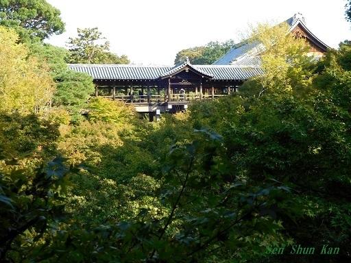 東福寺のもみじは、まだ緑    2019年11月1日_a0164068_16511964.jpg