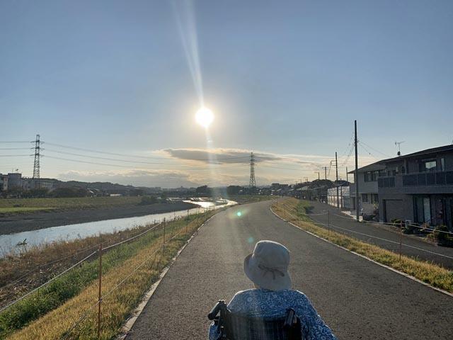 散歩とかつ丼_e0133780_18290533.jpg