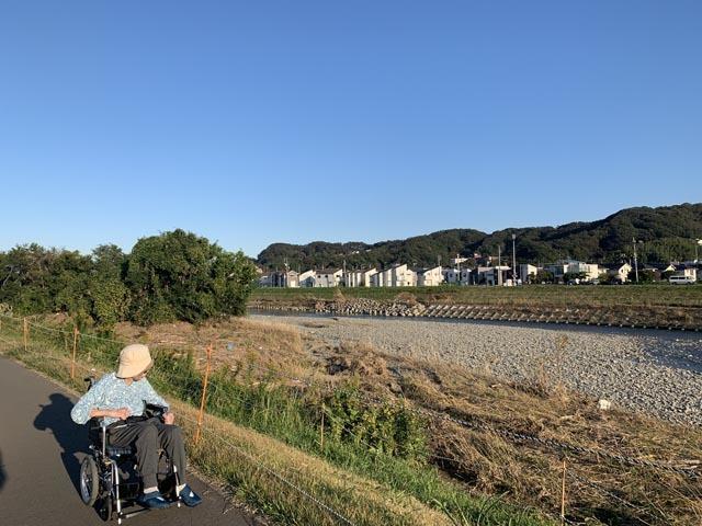 散歩とかつ丼_e0133780_20415142.jpg