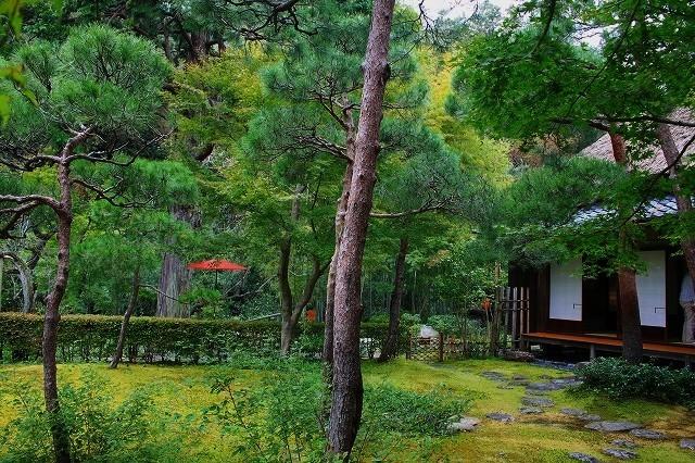 鎌倉 一条恵観山荘_f0374092_23041120.jpg