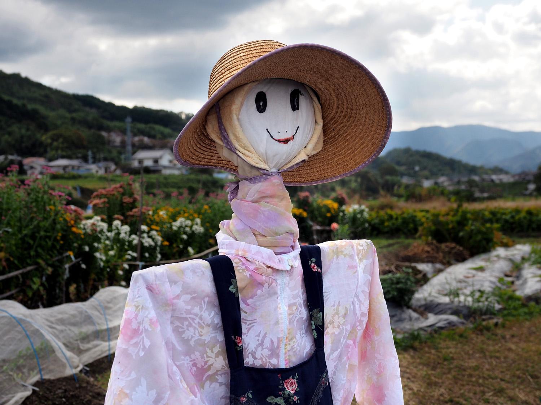 嬉の石川かかし祭り フェスティバル_e0254493_2103744.jpg