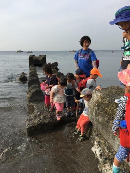 秋晴れの活動  ~3歳組~_b0310894_22125156.jpg
