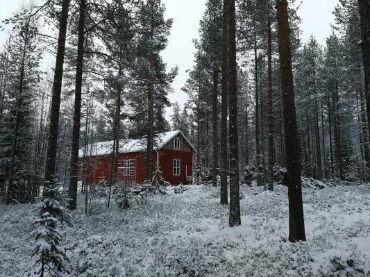 10月から森の家生活開始_d0090294_17054297.jpg