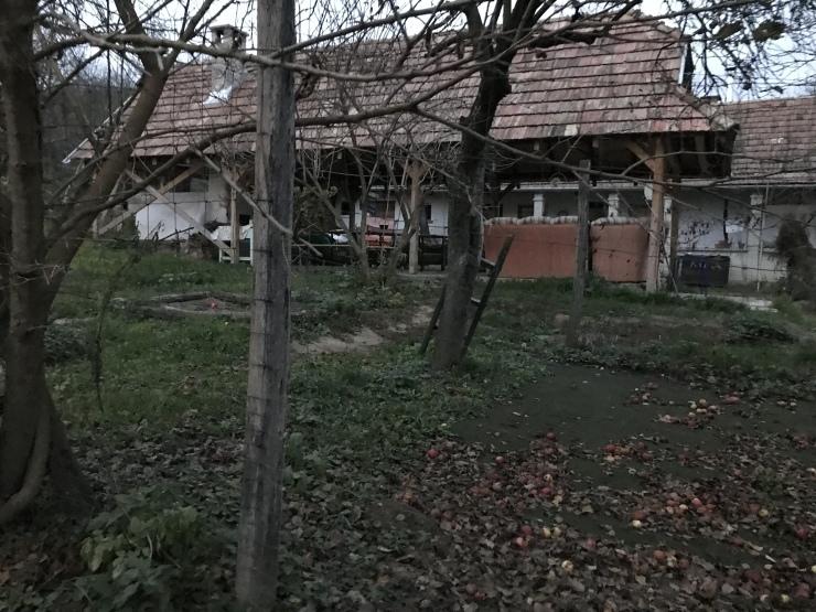 ハンガリー日記  アートキャンプ最終日  11月3日_c0100195_04514315.jpeg