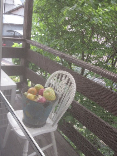 フルーツのある風景_e0341401_01561203.jpg