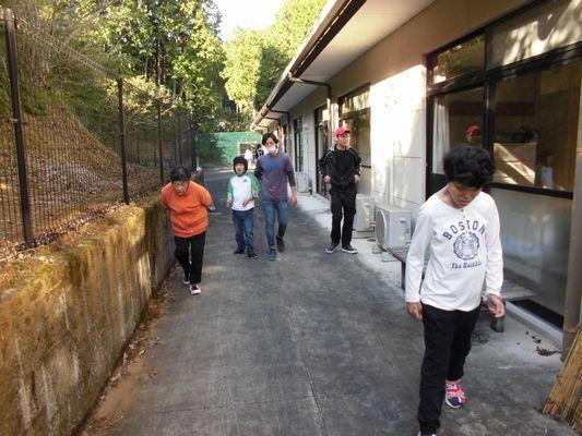 11/4 朝の散歩_a0154110_08050111.jpg