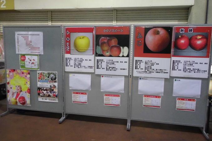 りんごの食べ比べ_b0171839_14595478.jpg