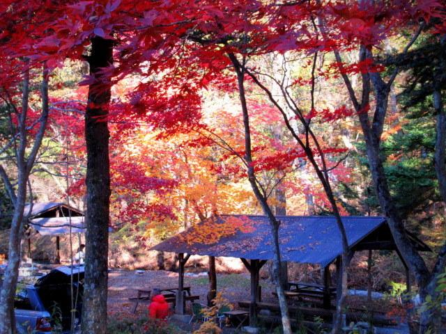 2019・軽井沢の紅葉速報⑥ * 湯川沿いの紅葉♪_f0236260_20214343.jpg