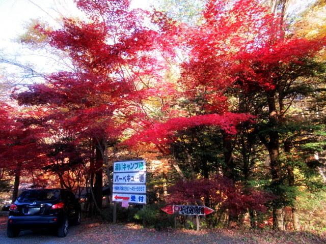2019・軽井沢の紅葉速報⑥ * 湯川沿いの紅葉♪_f0236260_20221953.jpg