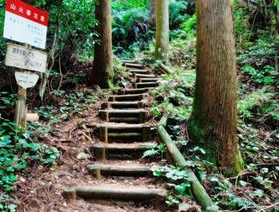岩湧山はススキの見ごろ♪_b0194861_20182295.jpg