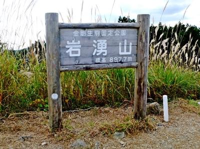 岩湧山はススキの見ごろ♪_b0194861_22424590.jpg