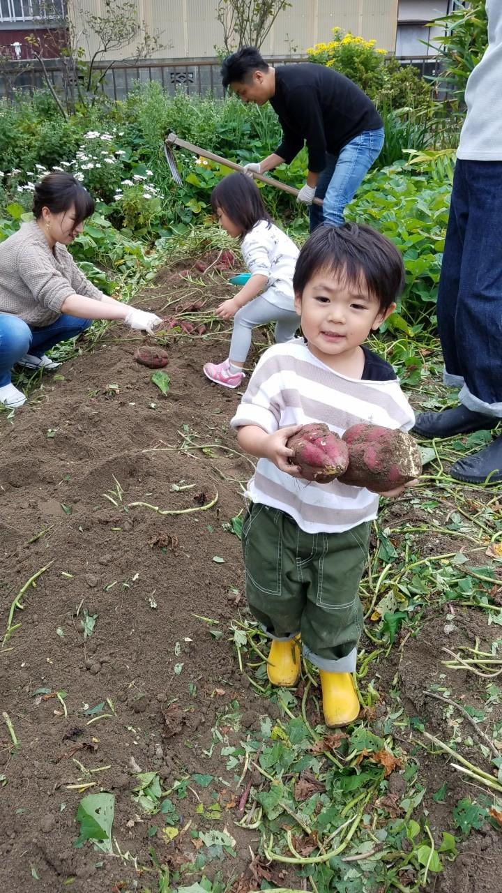 ★初めての芋ほり・・_b0313261_16465170.jpg