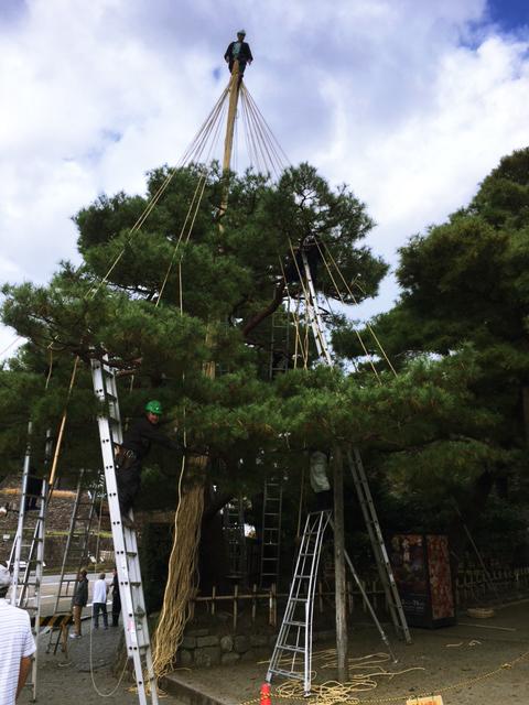 兼六園の雪吊り_c0225067_13465229.jpg