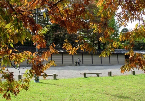 秋がスピードアップ 京都御苑_e0048413_19445473.jpg