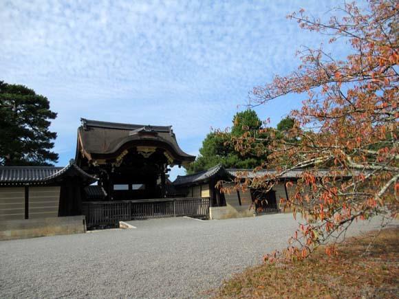 秋がスピードアップ 京都御苑_e0048413_19452027.jpg