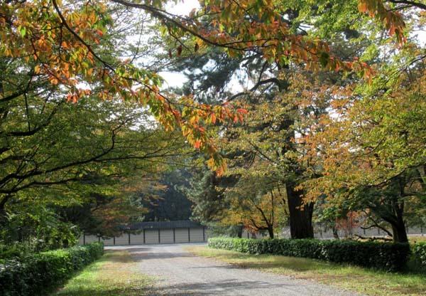 秋がスピードアップ 京都御苑_e0048413_19452581.jpg
