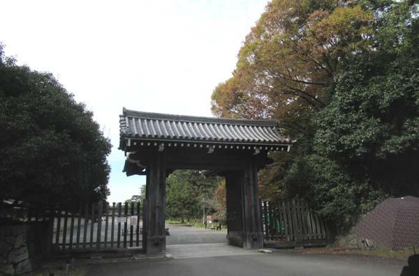 秋がスピードアップ 京都御苑_e0048413_19452960.jpg