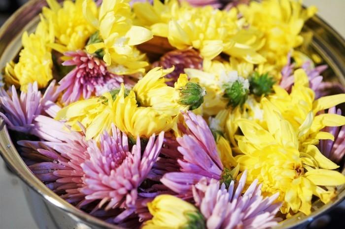 ■菜園発季節料理(1)【里芋のフライ/菊の花入りお酢の物】娘夫婦へのおもてなし^^_b0033423_21172704.jpg