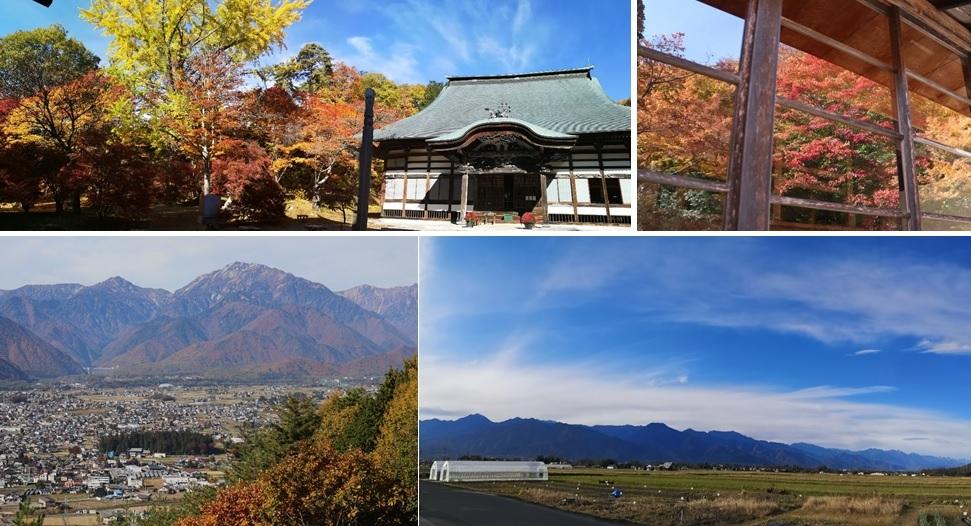 霊松寺のもみじと北アルプス_a0212730_19263797.jpg