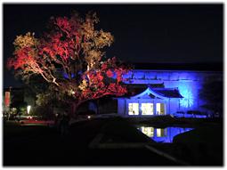 上野 東京国立博物館「正倉院展」へ_d0221430_21081727.jpg