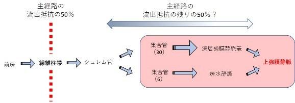 第60回大阪眼科手術の会 その2 (1183)_f0088231_09465493.jpg